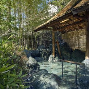 新緑シーズンに慶雲館でお得に泊まろう!通常料金より15%割引
