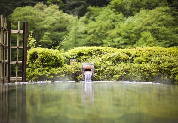 期間限定・優雅なひとり旅【源泉掛け流し&山河の味覚を濃縮した深山会席】プラン