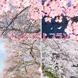 桜尽くしプラン