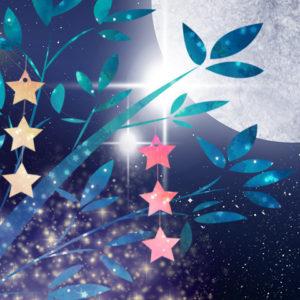 限定3日間7/5(金)~7/7(日)「七夕の星空観察と七夕短冊(ネイチャーガイド付)プラン」