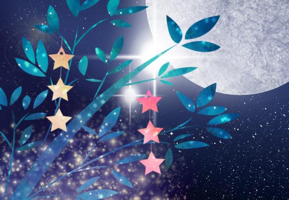 【限定3日間7/5(金)~7/7(日)】天の川流れる七夕の星空観察と七夕短冊(ネイチャーガイド付)プラン